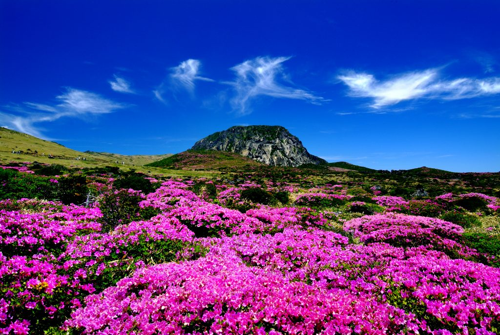 jeju-island-south-korea